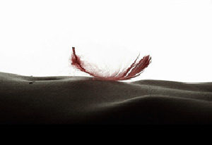 sensual massage for woman feather touch