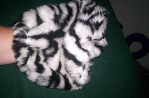 Bliss Balls zebra